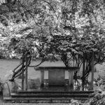 Altar in the Garden
